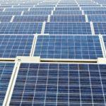 Las claves para el desarrollo de una empresa sostenible