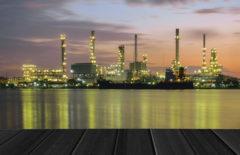 Los sectores de producción y sus características