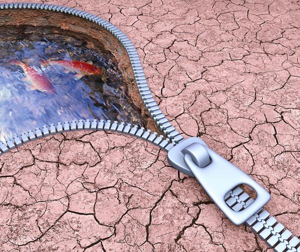 responsabilidad ambiental empresarial