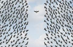 La importancia del liderazgo transformacional