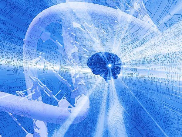 inteligencia kinestésica