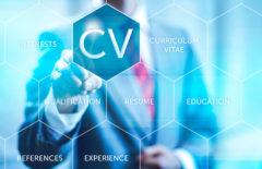 Aptitudes y currículum: la clave del éxito profesional