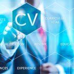 Aptitudes y curriculum: la clave del éxito profesional