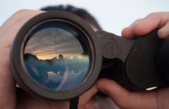 4 pruebas de cómo la visibilidad mejora la cadena de suministro