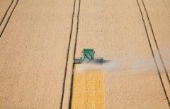Innovación y desarrollo local en el medio rural: evolución de la PAC