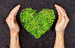 La sostenibilidad en la Supply Chain