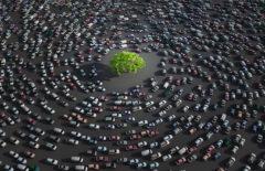 Ecomovilidad: decisiones que hacen tu cadena más sostenible