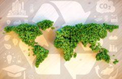 Cadena de suministro sostenible, ¿es importante fomentarla?