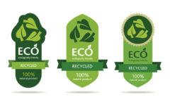 Tendencias en envases y embalajes sostenibles