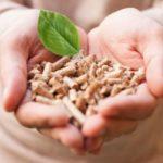 El papel de la cadena de suministro en el creciente uso de la biomasa