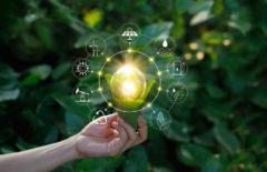 Propuesta de valor sostenible: 6 razones y 5 ejemplos