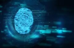 Seguridad en almacén en tiempos de IoT