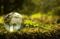 Ecologia industrial: buscando el modelo más sostenible