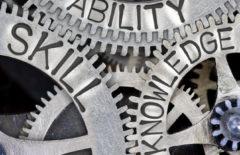 Las capacidades y competencias organizativas más importantes en supply chain