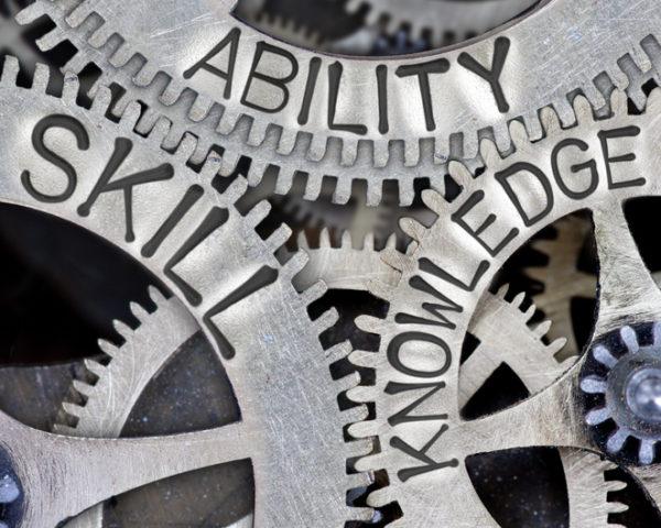 capacidades y competencias organizativas