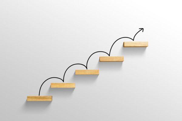 etapas de una empresa