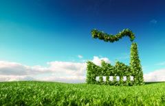 Producción y productividad, avances y sostenibilidad