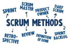 Roles scrum: conoce cuáles son