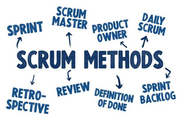 roles scrum